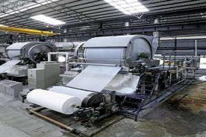 paper and pulp